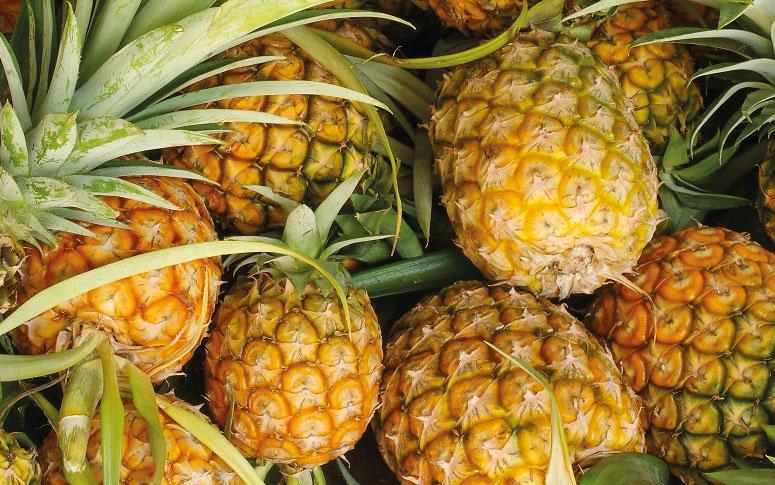 O abacaxi ajuda na perda de peso